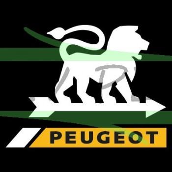 Courroie rabots PEUGEOT FIP150